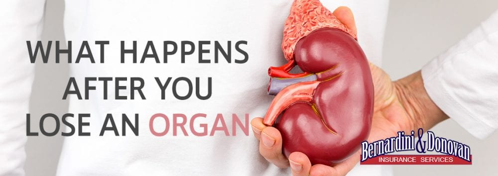 What Happens After You Lose an Organ
