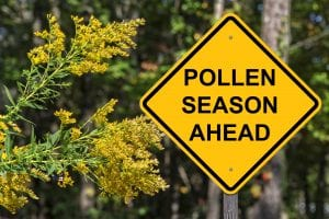 Track the pollen