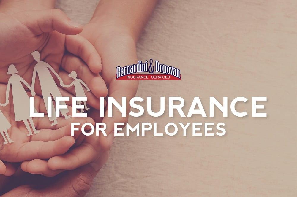 Employee life insurance