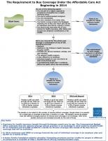 Individual-Mandate-flowchart